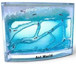 Ant World hangyafarm