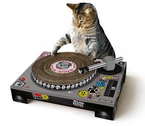 Dj kaparópult muzikális macskáknak