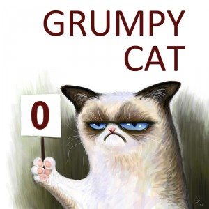 Grumpy Cat fürdőköntös